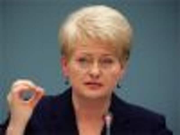 Президент Литвы призвала Киев прислушаться к юго-востоку Украины