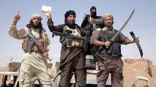 США запасаются террористами. Анатолий Вассерман