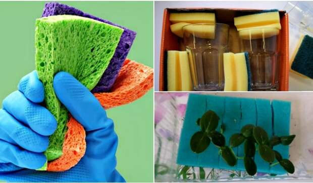 Полезные способы альтернативного использования губок для мытья посуды.