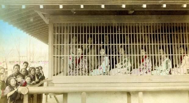 1890. Клетка с проститутками - низший уровень системы борделей