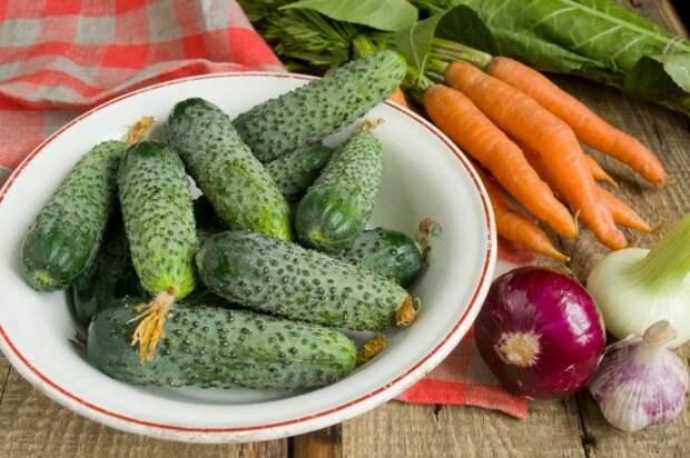 Замачивать овощи не нужно, достаточно их просто вымыть
