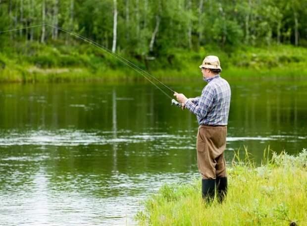 Рыбалка и охота - рассказ из сети авто, животные, охота, рыбалка, юмор
