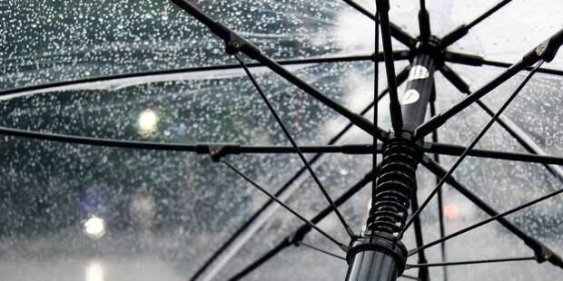 Центральную Россию зальет дождем