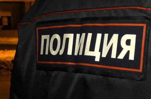Ижевчанка подозревается в применении насилия к полицейскому