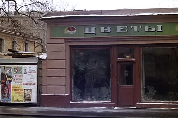 Веерная пальма вашингтония стояла в магазине «Цветы на Пречистенке».