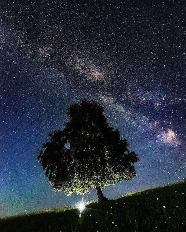 Звёздные ночи Алтая