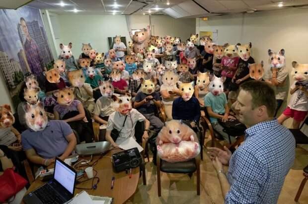 Грустная перспектива - на всех парусах на нары: Навальный подталкивает школоту к беспорядкам после голосования