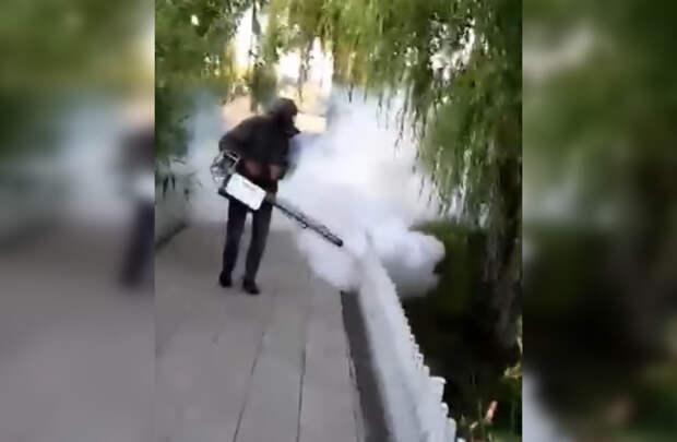 Заполонивших Крым комаров начали истреблять