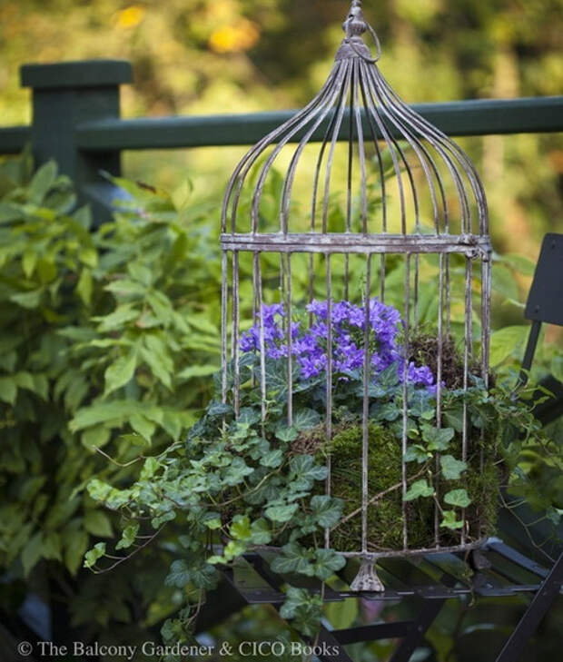 flowers-in-bird-cages-ideas2-3-1 (510x600, 299Kb)