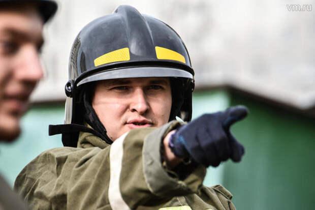 Московские пожарные спасли запутавшихся в металлическом проводе бельчат