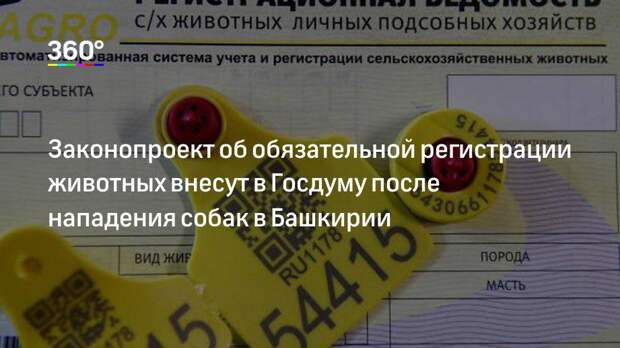 Законопроект об обязательной регистрации животных внесут в Госдуму после нападения собак в Башкирии