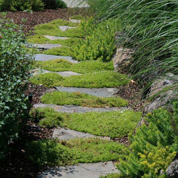 garden-path-good-looking-ideas2-2