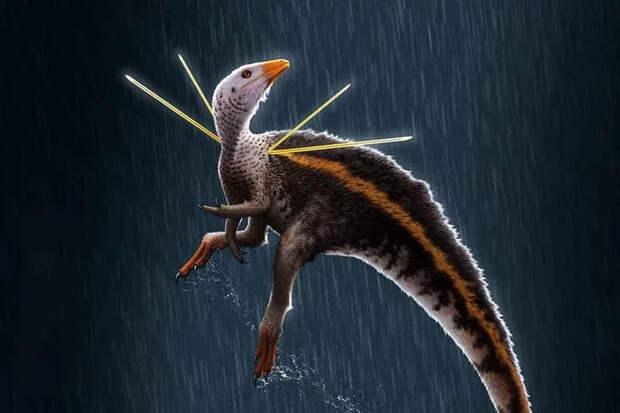 Убираджара джубатус был необычным динозавром Динозавры, Научная статья, Перевод
