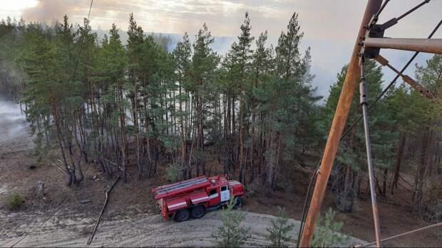 Пожары на Луганщине: открыто 14 уголовных дел