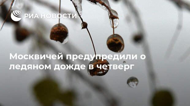 Москвичей предупредили о ледяном дожде в четверг