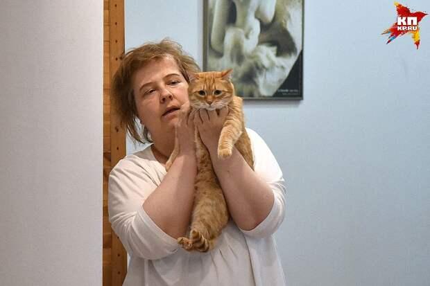 Кот Рыжик чужим не доверяет: сказывается прошлое, в котором кота избивали люди... Фото: Влад КОМЯКОВ