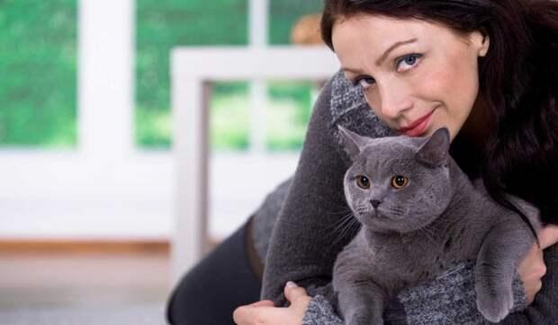 93% мужчин нравятся женские фото с котом