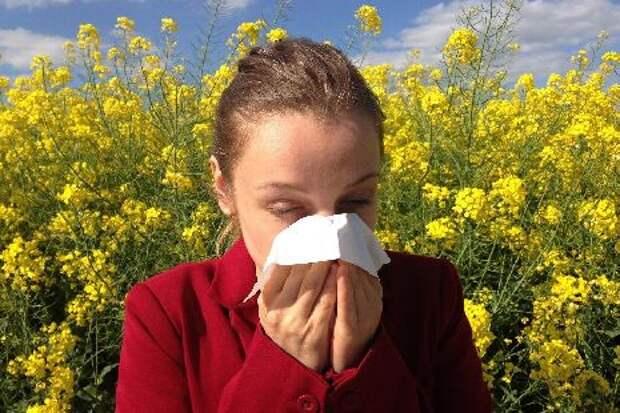 Стало известно, как лечить сезонную аллергию