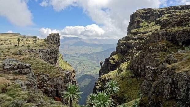 RoofofAfrica20 «Крыша Африки»: впечатляющая красота Эфиопского нагорья