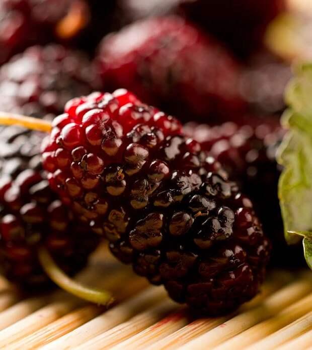 9 причин, почему шелковица - абсолютно уникальная ягода