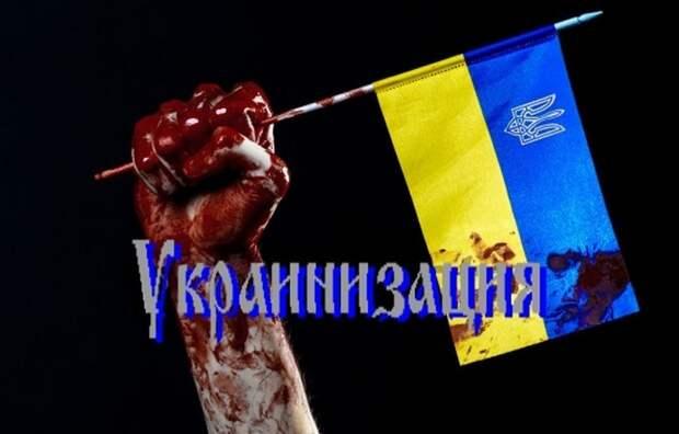 Тимошенко: украинцы недовольны украинизацией? Надо ужесточить!