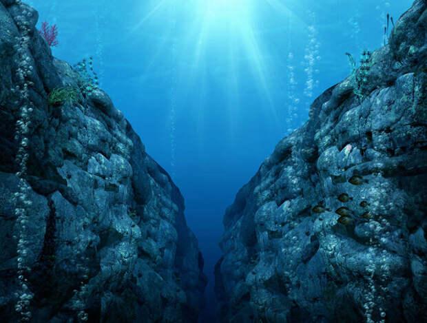Тайны Марианской впадины: Кто обитает в самой глубокой точке мира?