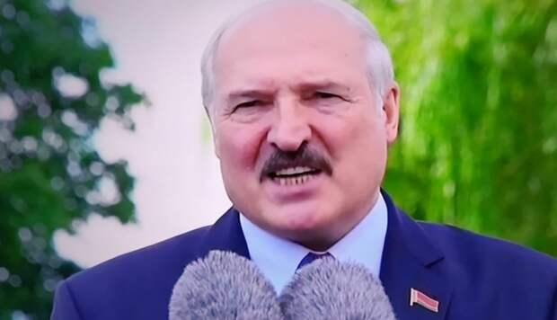 """""""Кинули, как…"""": Латвия, Литва и Польша готовят Лукашенко судьбу Януковича"""