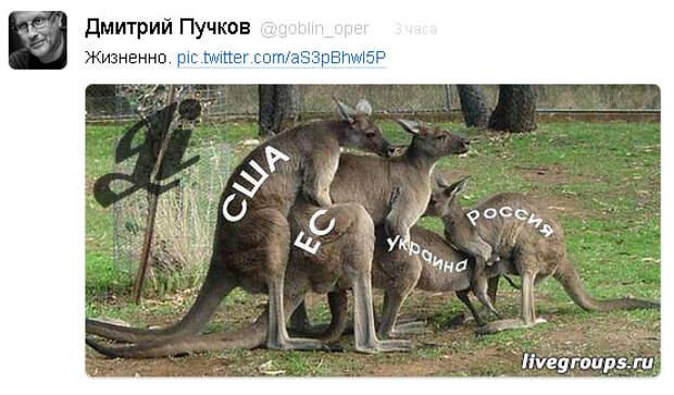 Твит от Дмитрия Пучкова (Гоблина) - Жизненно