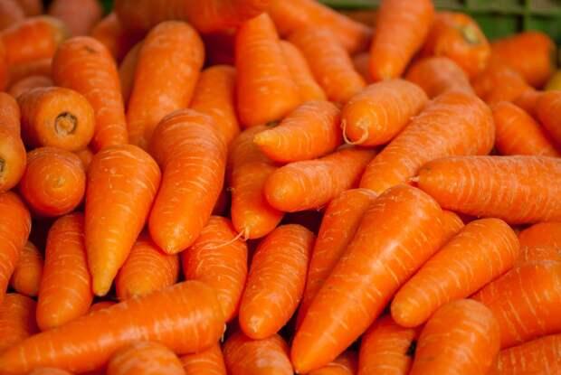 Три условия для сохранения собранного урожая моркови