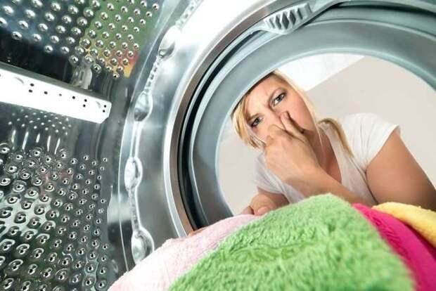 Профилактические работы для стиральной машины