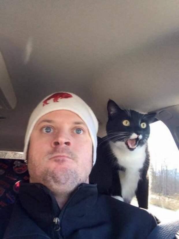 Забавные и веселые фотографии