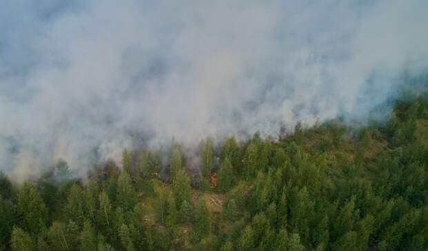 Количество лесных пожаров продолжает увеличиваться вКарелии