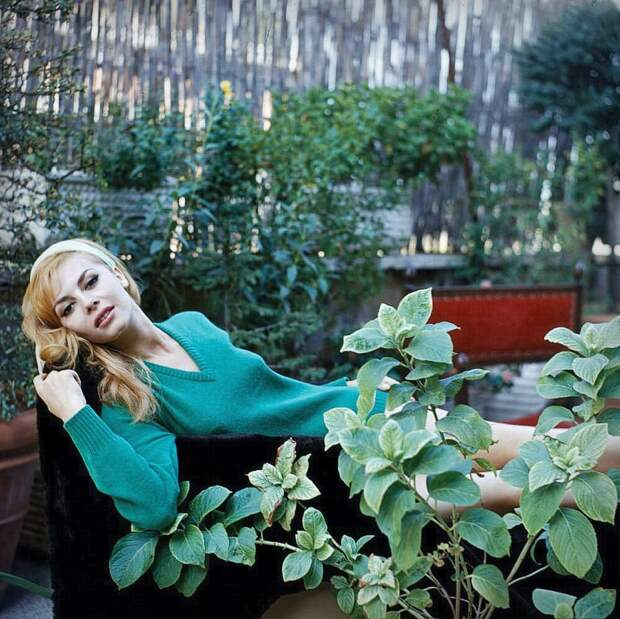 Красивая женщина всегда роскошна. Особенно, если это Мишель Мерсье.
