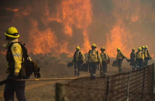 Лесной пожар на Столовой горе в ЮАР угрожает охватить частьКейптауна