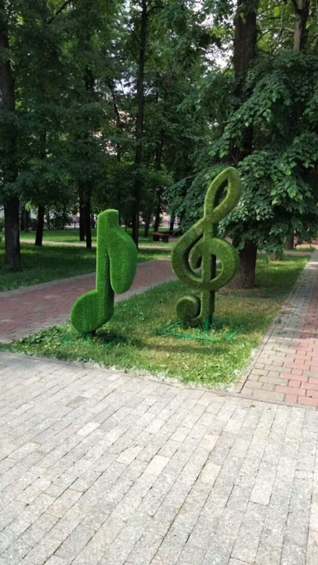 Музыка. Фото предоставлено управой района