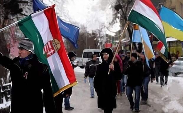 Никитин: Венгрия готовит почву для вывода Закарпатья из состава Украины