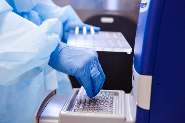 На Кубани коронавирусом заразились 84 человека