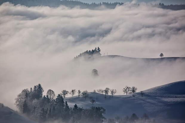 Мистическая история: сквозь туман в пустоту