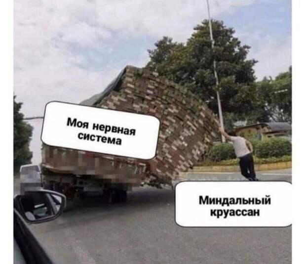 Забавные шутки и мемы