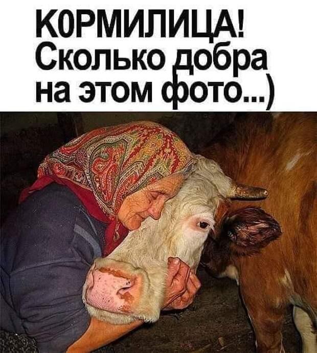Хорошо быть женщиной: знаешь, что твое место - кухня, а мужикам: страдай, ищи себя в этом большом и жестоком мире!
