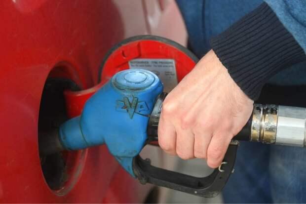 Новак: Проблем с бензином этим летом в России не ожидается