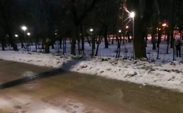 2 дня больной песик лежал на снегу в парке. Он не мог встать