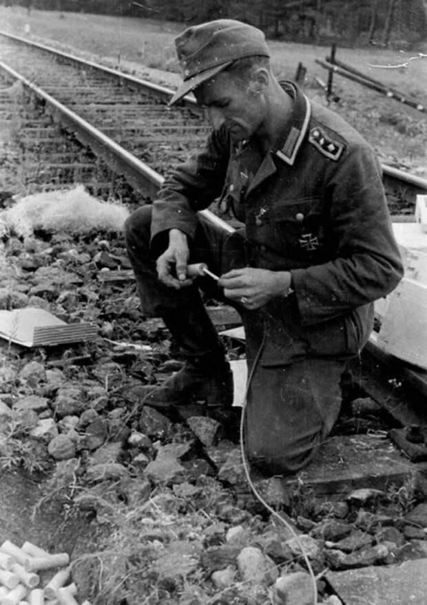 6-я пехотная под Ржевом. 1941-1942 г.