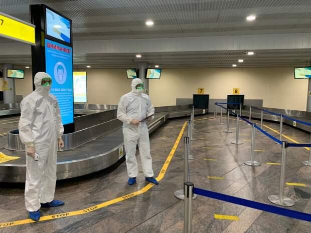 Спасатели Москвы в мае встретили более 8 тысяч прилетевших