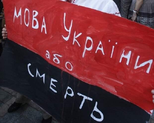 НаДонбассе умер избитый «патрiот Украины» (ФОТО)