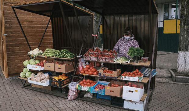 Эксперты ЦБ рассказали, когда остановится рост цен на продукты и стройматериалы
