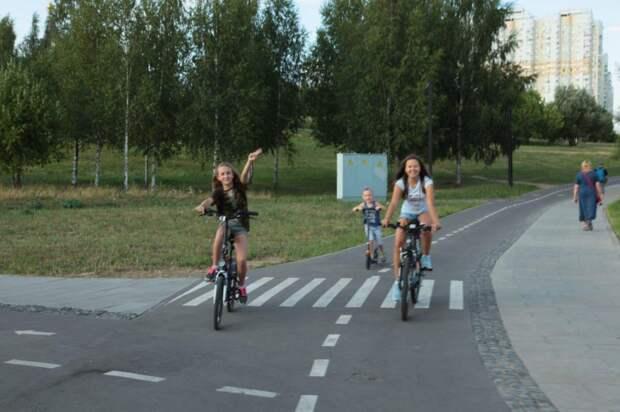 Велодорожка в парке. Фото: Архив редакции
