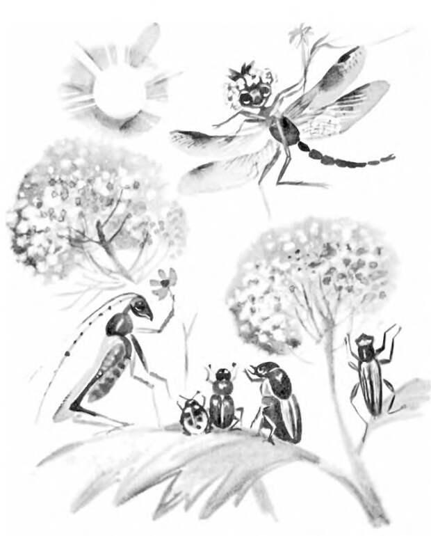 Басня Крылова Стрекоза и Муравей. Иллюстрация