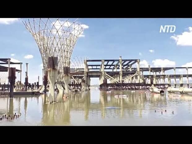 Как инвестировать миллиарды долларов в болото
