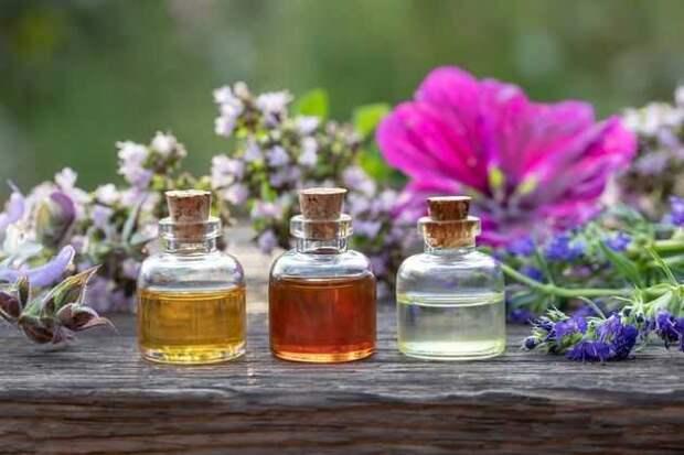 фитонциды в эфирных маслах